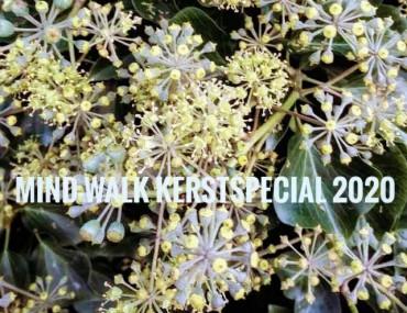 Kerstspecial in bos Birkhoven